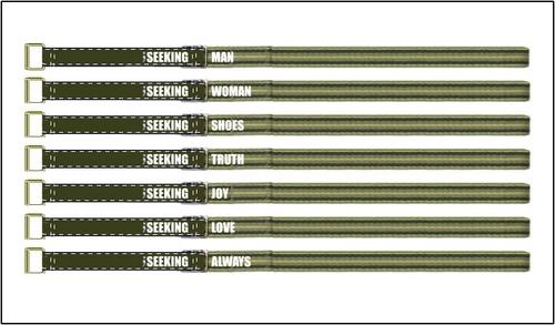 Never satisfied belt set